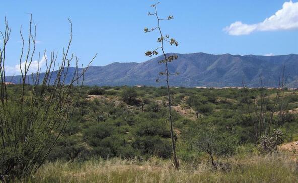 1624 S. Canyon Overlook, Benson, AZ 85602 Photo 5