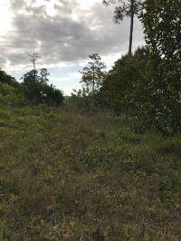 Home for sale: Lot Tripp Rd., Loxahatchee, FL 33470