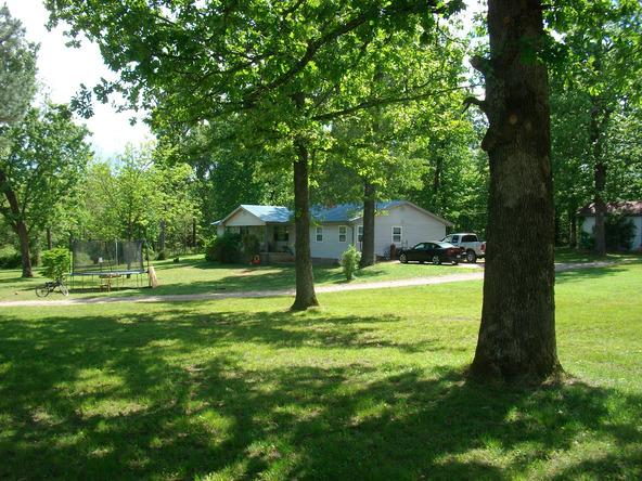 52 White Oak Cir., Highland, AR 72542 Photo 3