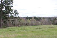 Home for sale: 16 Mountain Ridge Dr., Pineville, MO 64856