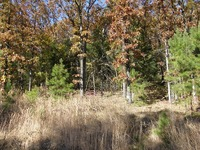 Home for sale: Lot 23 East Acre Subdivision, Clarksville, AR 72830