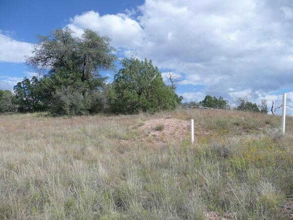 290 N. Navajo Trail, Young, AZ 85554 Photo 22