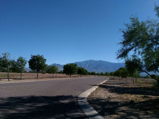 6515 W. Sycamore Ln., Pima, AZ 85543 Photo 1