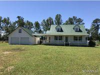 Home for sale: 1944 County Rd. 310, Crane Hill, AL 35053