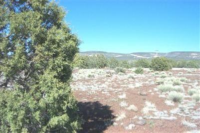 1227 W. Yukon Dr., Ash Fork, AZ 86320 Photo 10