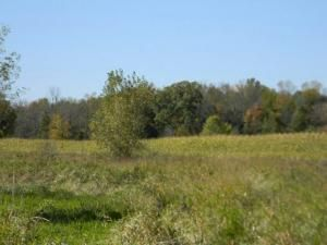 27.55 Acre State Hwy. 32, Sheboygan Falls, WI 53085 Photo 2