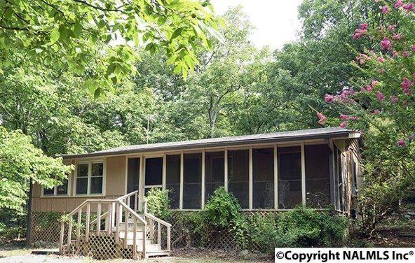 93 County Rd. 600, Mentone, AL 35984 Photo 1