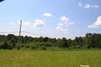 Home for sale: E. Hwy. 280, Dadeville, AL 36853