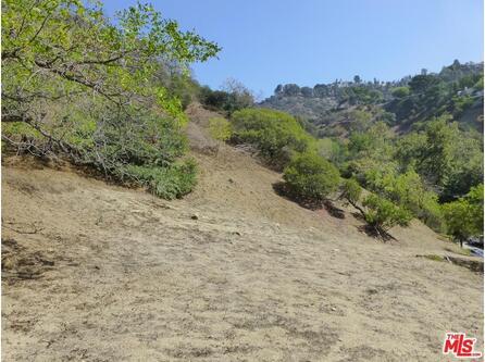 2251 N. Oakden Dr., Los Angeles, CA 90046 Photo 8
