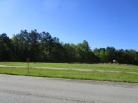 Home for sale: 12+/- Ac Hwy. 301 & 176, Santee, SC 29142