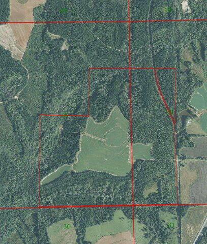 1 County Rd. 377, Opp, AL 36467 Photo 4