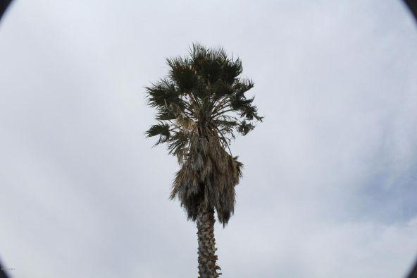 17559 E. Trails End, Mayer, AZ 86333 Photo 17