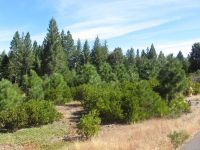 Home for sale: Lot #2 Kirby Ct., Burney, CA 96013
