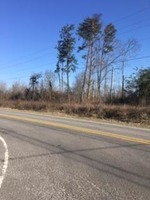 Home for sale: 0 Hwy. 141, Ider, AL 35981