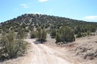 Home for sale: Hwy. 14 Madrid, Cerrillos, NM 87010