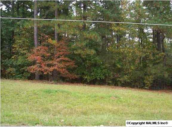 4 County Rd. 380, Centre, AL 35960 Photo 1