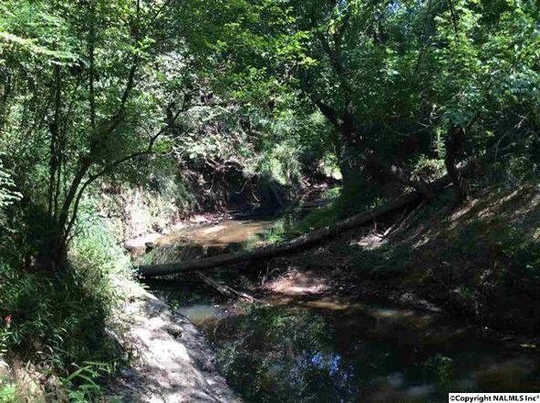 104 County Rd. 338, Moulton, AL 35650 Photo 27