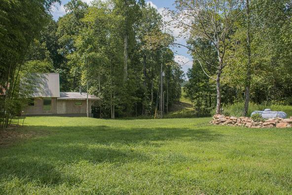 1374 County Rd. 641, Mentone, AL 35984 Photo 3