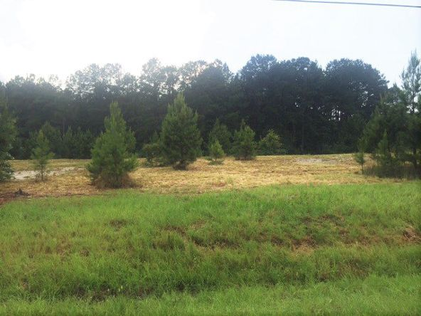 4 Ac Point A Rd. (Cr 59), Andalusia, AL 36421 Photo 5