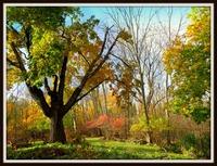 Home for sale: 957 Ridge Rd., Newton, NJ 07860