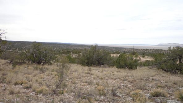 952 Bridge Canyon Unit 5 Lot 952, Seligman, AZ 86337 Photo 10