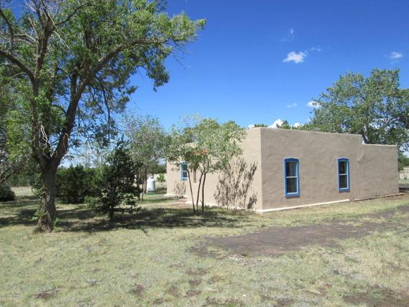 1593 Cr 3140, Vernon, AZ 85940 Photo 11