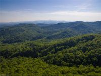 Home for sale: 182 +/- Acres Bob Barnwell Rd., Asheville, NC 28803
