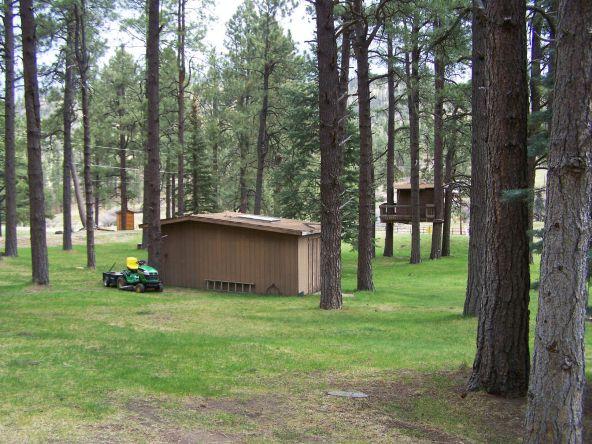 1 County Rd. 2153, Alpine, AZ 85920 Photo 53