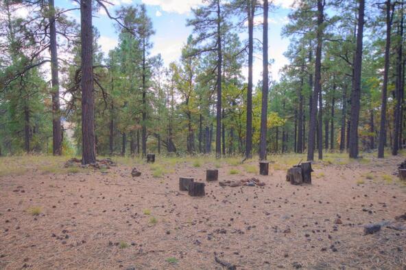 8100 W. Dk Ranch Rd., Flagstaff, AZ 86005 Photo 14