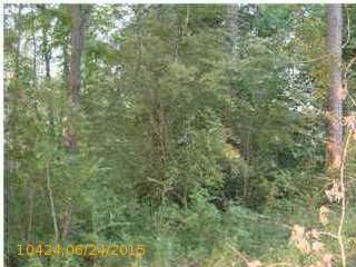 70 Cherry Ln., Pell City, AL 35128 Photo 1