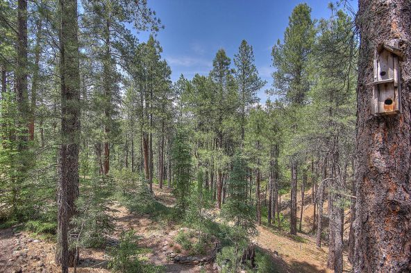 429-2031 William Palmer --, Flagstaff, AZ 86005 Photo 64