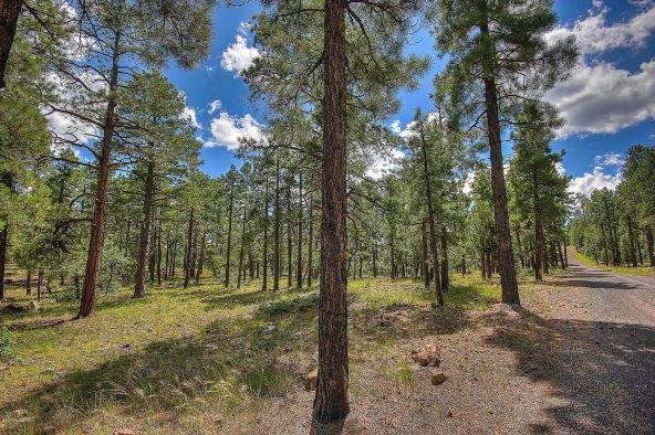 1729 S. Pine Ridge Dr., Williams, AZ 86046 Photo 2