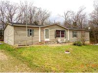 Home for sale: 1203 Brian Dr., Bonne Terre, MO 63628