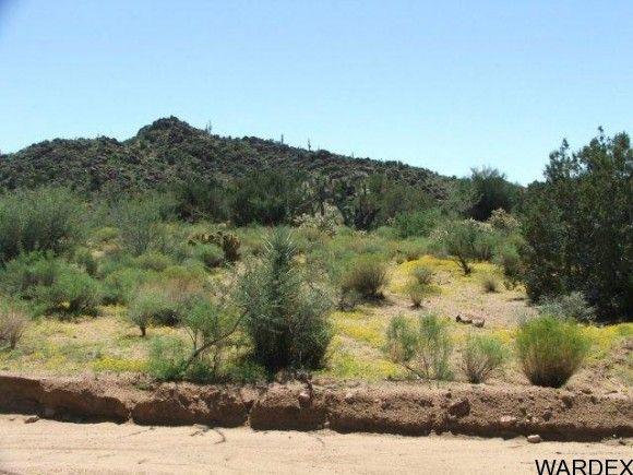 3578-A E. Desert Willow Dr., Yucca, AZ 86438 Photo 2