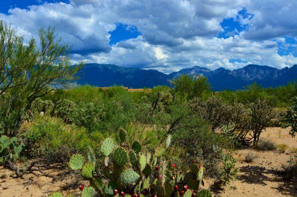 14601 N. Quiet Rain Dr., Oro Valley, AZ 85755 Photo 4