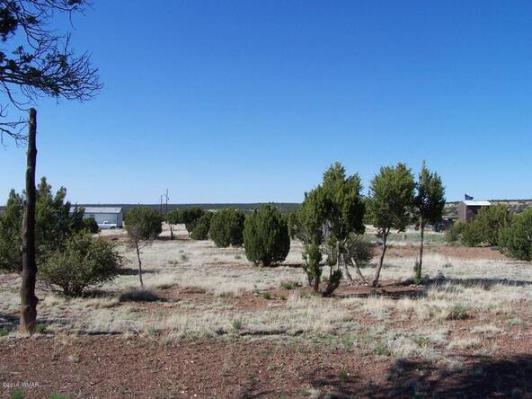 8482 Basalt Pl., White Mountain Lake, AZ 85912 Photo 15