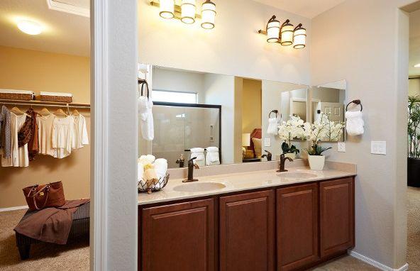 20432 N. 260th Avenue, Buckeye, AZ 85396 Photo 12