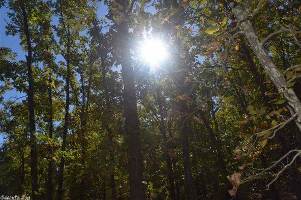 32 Meadow Crest, Sherwood, AR 72120 Photo 40