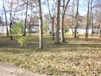 Home for sale: Lot 2 Park Dr., Waterford, WI 53185