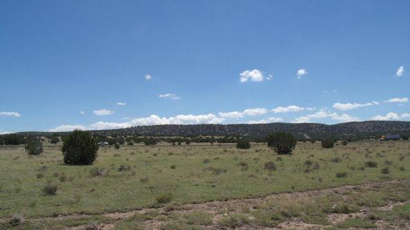 11116 S. State Route 64, Williams, AZ 86046 Photo 2