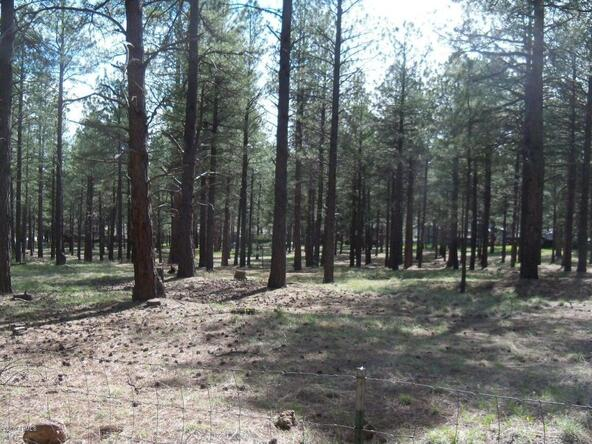 670 Old Munds Hwy. --, Flagstaff, AZ 86005 Photo 3