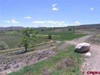 Home for sale: Tbd 6495 Rd., Montrose, CO 81403