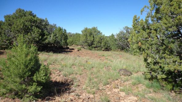 514 Westwood Ranch Lot 514, Seligman, AZ 86337 Photo 15