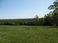 Home for sale: 26318 Farm Rd. 1197 105 Land, Eagle Rock, MO 65641