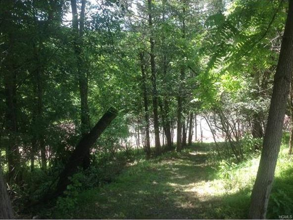 299 Pine Hill Rd., Chester, NY 10918 Photo 13