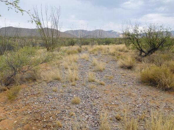 16705 S. Sierrita Mountain, Tucson, AZ 85736 Photo 31
