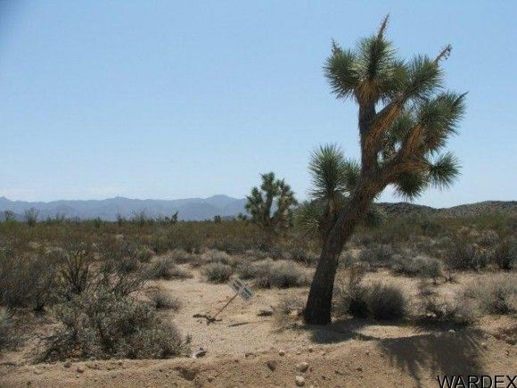 3054/58 Dateland Rd., Yucca, AZ 86438 Photo 3