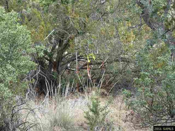 5.01 Ac W. Creek Rd., Portal, AZ 85632 Photo 2