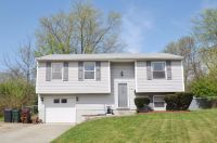 Home for sale: 10277 Chippenham Ct., Colerain Township, OH 45231