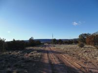 Home for sale: 27160 Punta Ln., Seligman, AZ 86337
